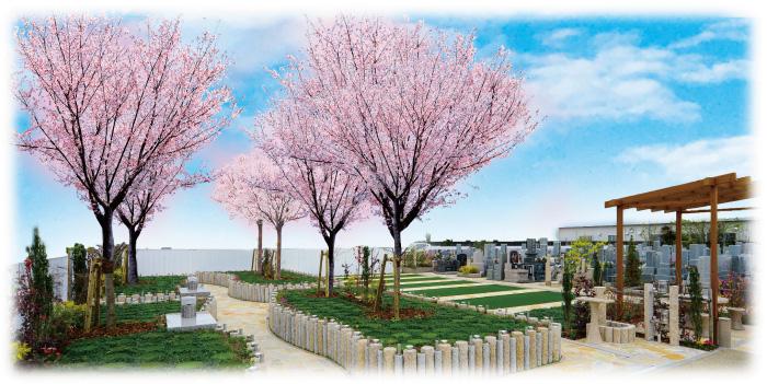 永代供養 樹木葬「桜」